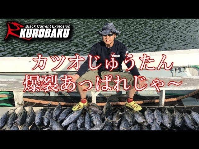 カツオ釣 キハダ釣 爆釣  第八源洋丸(徳島県)Bonito & Yellowfin tuna fishing