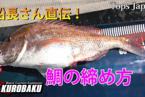 鯛の締め方サムネイル