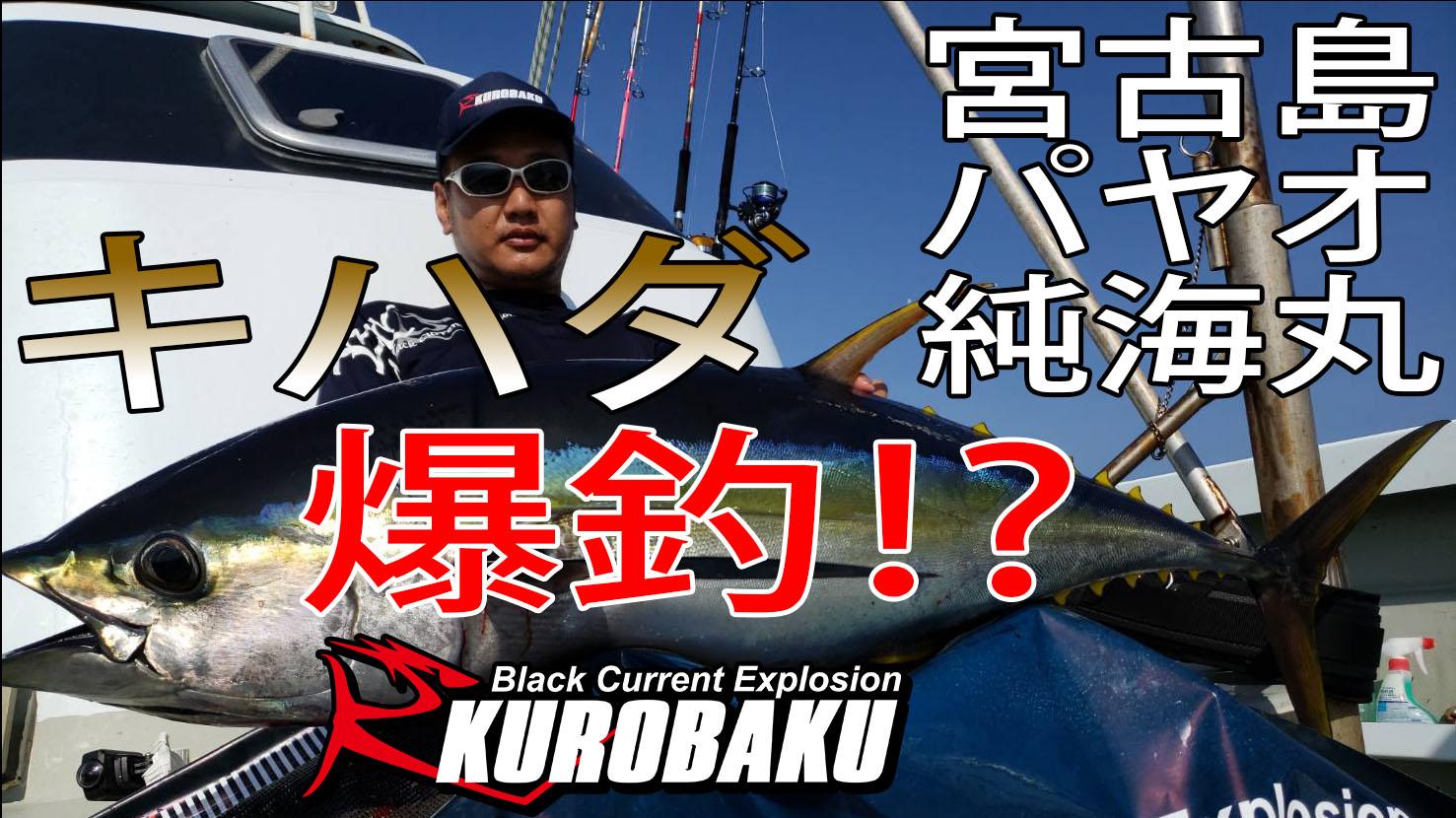 宮古島パヤオ 純海丸 キハダ釣行のサムネイル