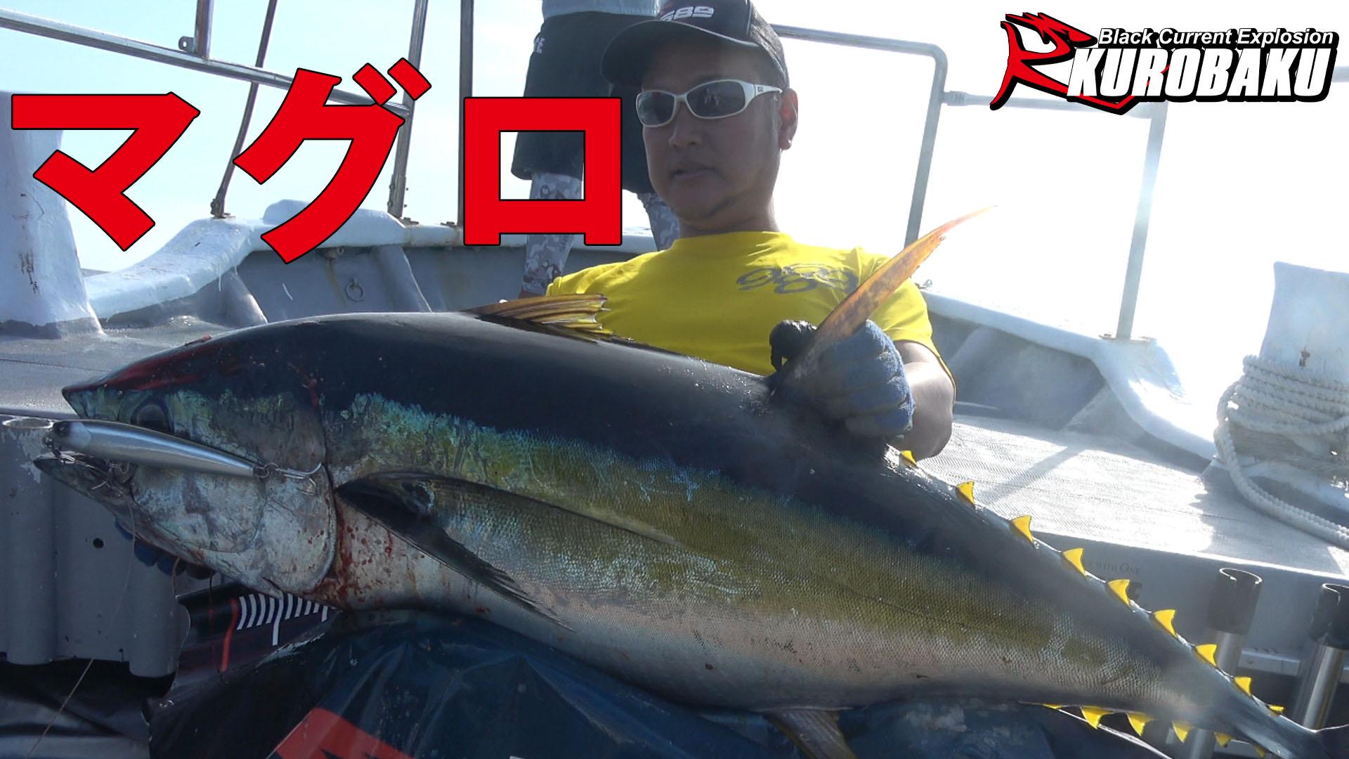 キハダ釣りのサムネイル
