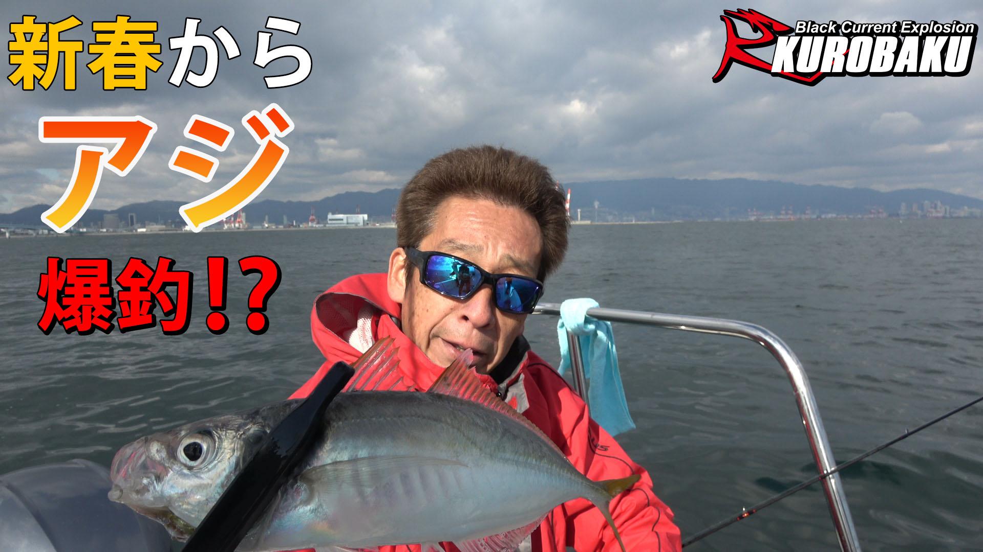 アジのサビキ釣りのサムネイル