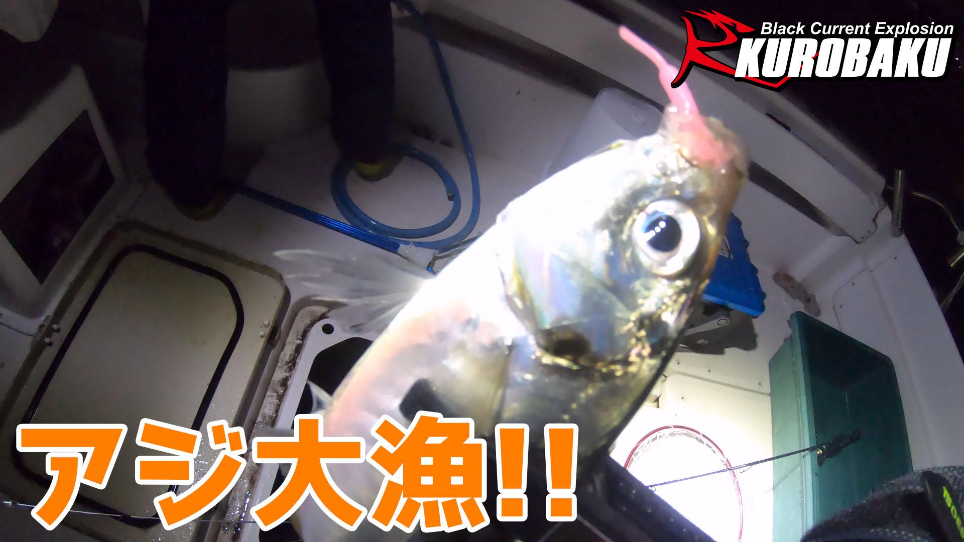 アジ大漁!!