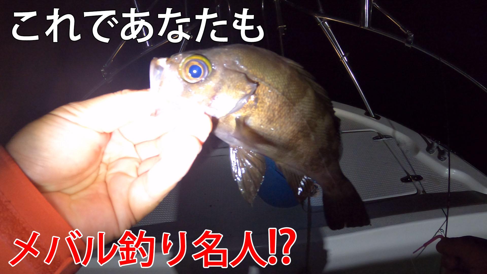釣りのプロに教わるアジ釣りからのメバル釣り解説のサムネイル