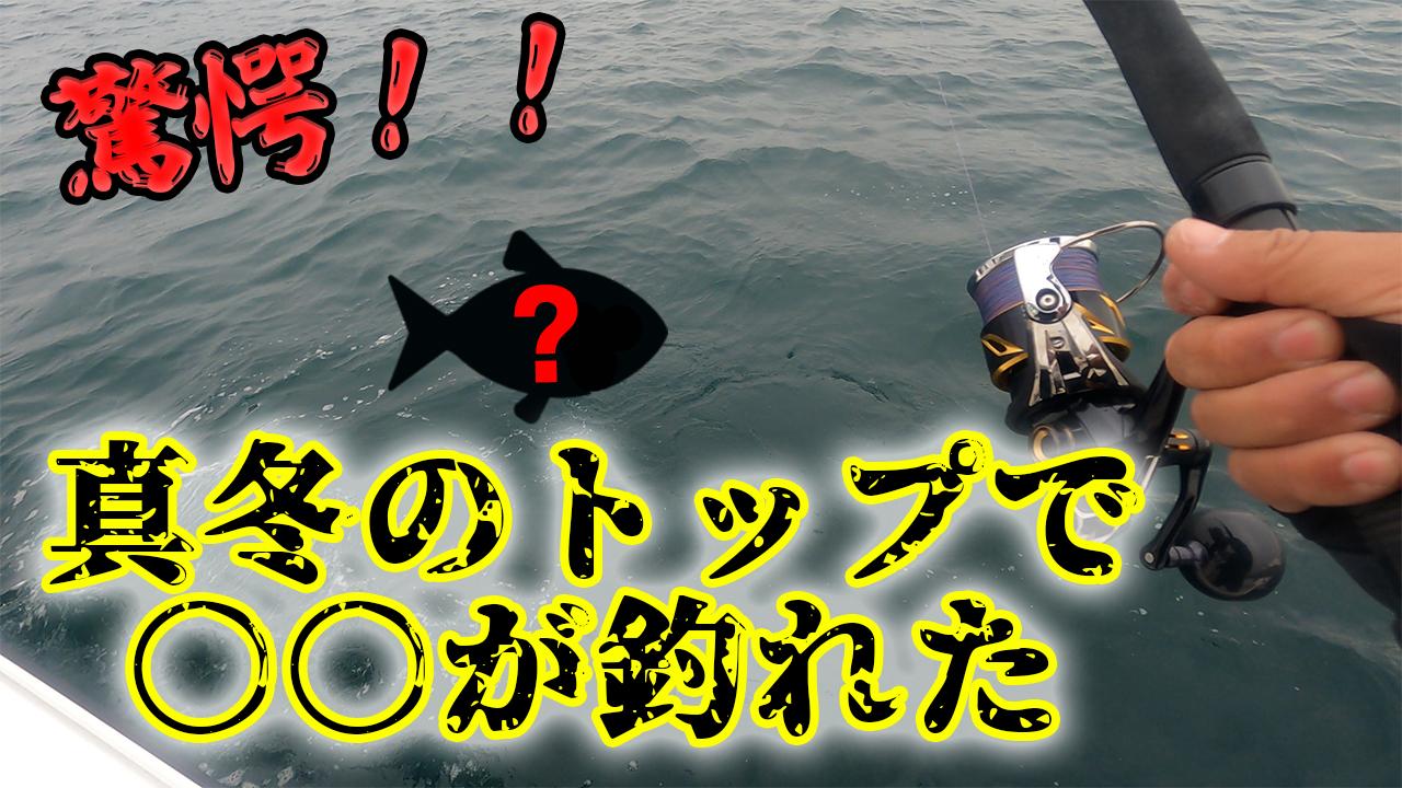 YAMAHAレンタルボートFAST23でポッパー縛りのキャスティング釣りにてまさかの魚が釣れた・・・⁉のサムネイル